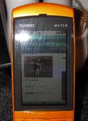 IMGP0440